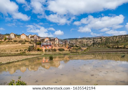 Rice paddies in the central highlands of Madagascar - Landscape of Madagascar