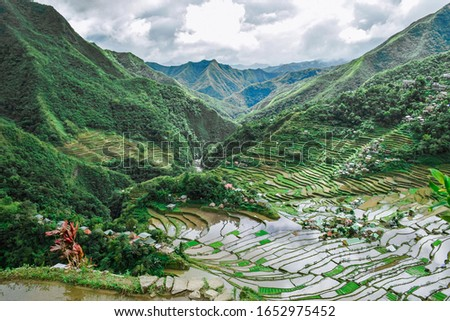 Rice terraces in Batad, a UNESCO World Heritage Site in the Philippines