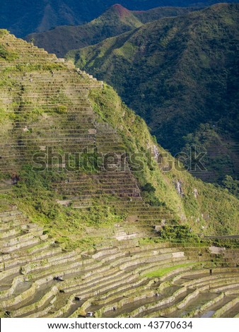 rice terraces of batad in north-luzon, philippines