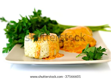 Rice with paprika chicken sauce and parsley - on plate - stock photo