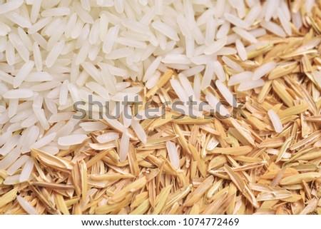 Rice with rice husk #1074772469