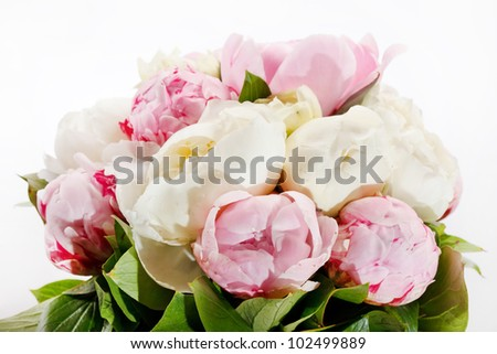 Rich bunch of peonies