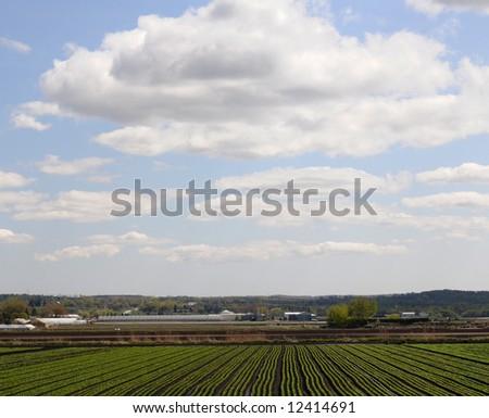 Rich farm country