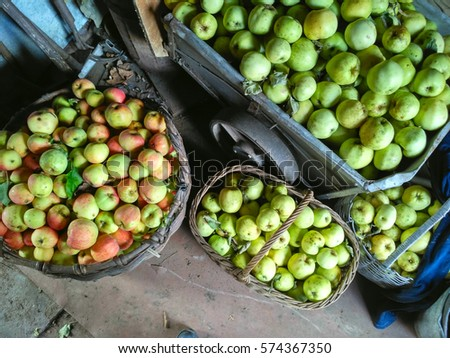 Rich harvest of apples harvested in cart and baskets in old rural barn