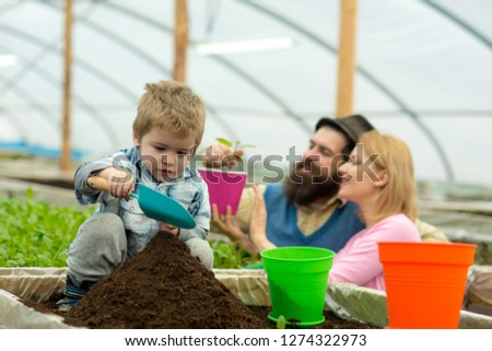 rich land. land rich with fertile. rich land for growing plants. family in greenhouse work with rich land. family gardening #1274322973