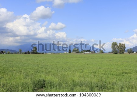 Rich, productive farm land in British Columbia's agricultural belt, the Fraser Valley/Productive, rich Farm land/Acres of rich, green farm land