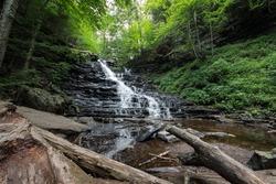Ricketts Glen F.L Ricketts Falls