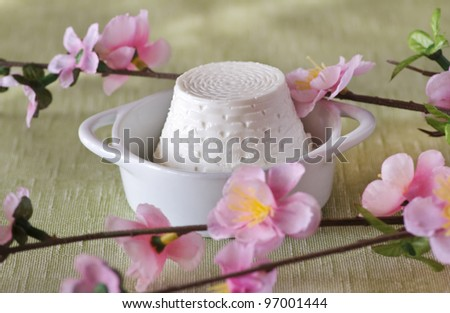 ricotta cheese on a spring background