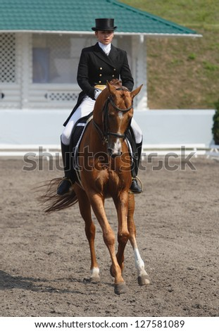Rider and horse in a dressage competition