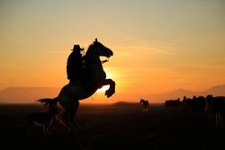 rider and prancing horse. A view at sunset. Cappadocia, Turkey