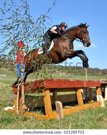 Rider in the jumping show