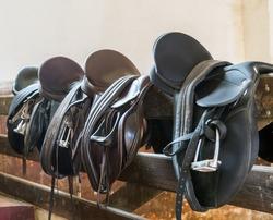 Rider Leather Saddles on fence