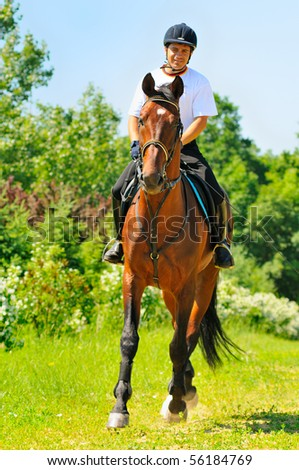 Rider on bay sportive horse