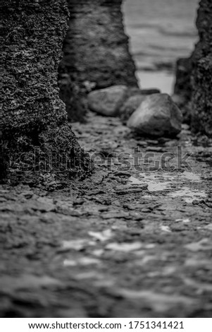 Riffs near Baltic sea coast from Sweden side. Stony beach. Stock foto ©