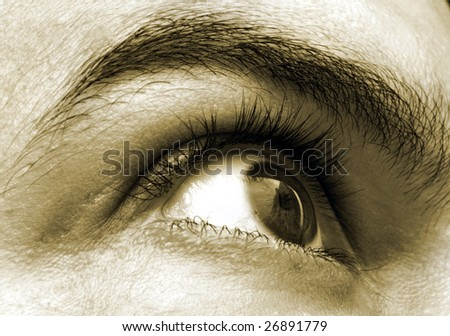 Right eye showing the eyebrow and the eyelid with reflection of a building across the eyeball.