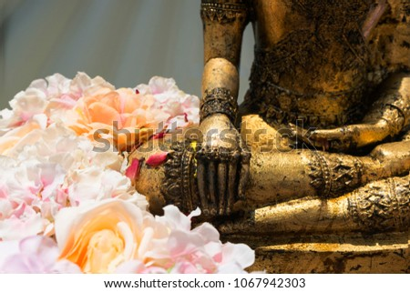 Right hand of gold buddha statue and beautiful flower for praying in water festival or Thai New Year day #1067942303