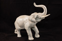 right side of trumpeting light grey elephant
