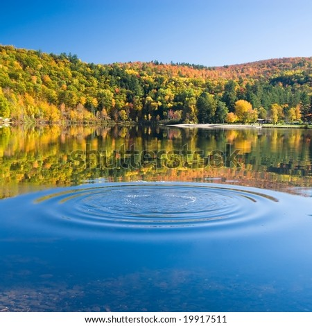 Rings of perfect waves on the smooth surface of an amazingly calm lake