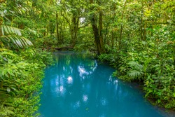 Rio Celeste with turquoise river, blue water. Tenorio national park Costa Rica. Central America.