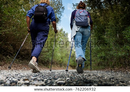 Riparbella, Livorno, Italy - October 05, 2017 - Hikers walk along the hills rich in vineyards, olive groves, cork oak trees, in the area of Riparbella, Tuscany #762206932