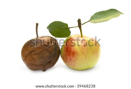 Ripe and rotten apple on a white background - stock photo