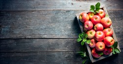 Ripe Apples In Wooden Basket On The Rustic Table