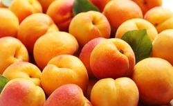 Ripe apricots fruit background