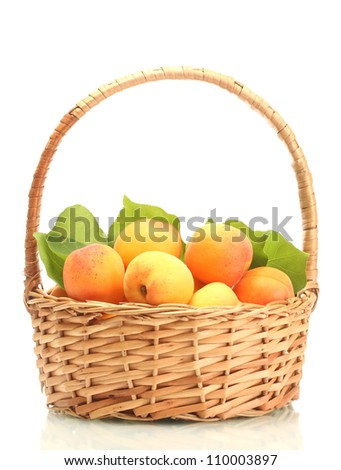 ripe apricots with green leaves in basket isolated on white