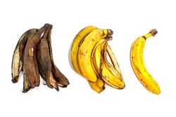 Ripe banana, yellow fresh banana peel and already spoiled darkened, rotten brown. Bulky brushes with several pieces. Comparison, the process of maturation and decay. White background.