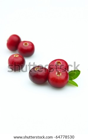 Ripe berries of a cranberry on a white background close up