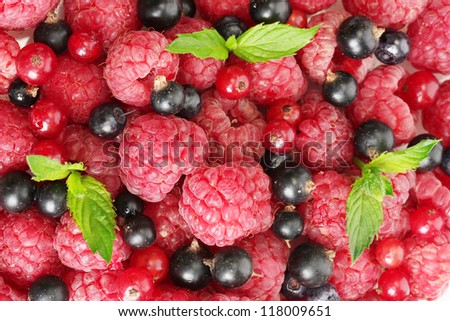 ripe berries with mint, close up
