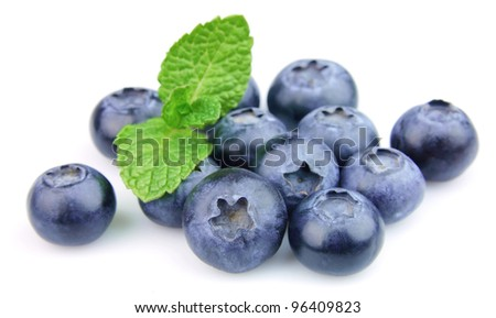 Ripe blueberry with mint closeup