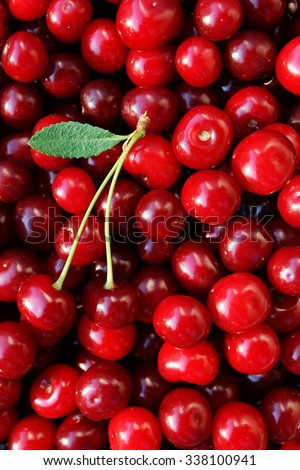 ripe cherries with a leaf on a background of cherries