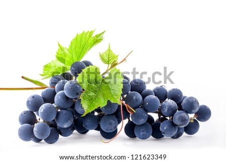 Ripe dark grapes with leaves, on white background