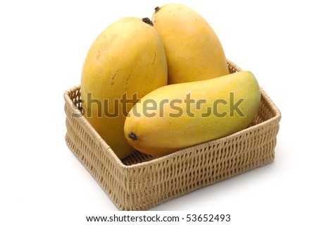 Ripe golden mangoes in basket
