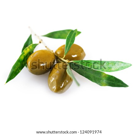 Ripe green olives with leaves on a white background