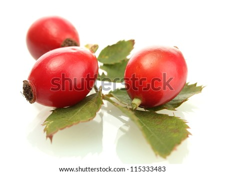 ripe hip roses on green leaves, isolated on white