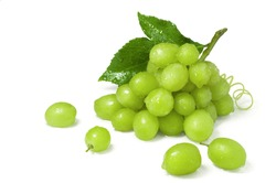 Ripe juicy sweet green grapes bunch isolated on white background