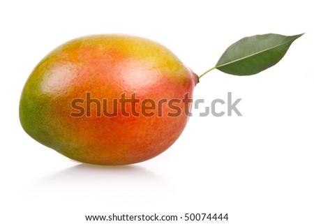 Ripe mango fruit isolated on white background - stock photo