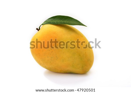 Ripe mangoe on white - stock photo