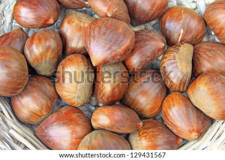 Ripe maroons, fruits of the sweet chestnut tree (Castanea sativa)
