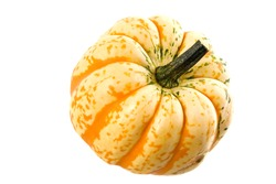 Ripe orange pumpkin on white background. Fresh head of gourd isolated on white. Studio shot. Close up. Organic farming, healthy food, BIO viands, back to nature concept.