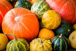 ripe organic colored pumpkins on an old wooden table