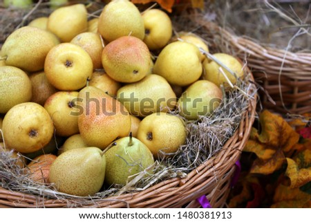 Ripe pears on straw in a wicker basket decorated with autumn leaves. Harvest holiday, festive decorations, farm market #1480381913