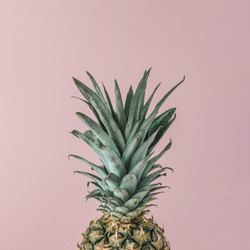 Ripe pineapple close up on pink pastel background. Minimal fruit concept.