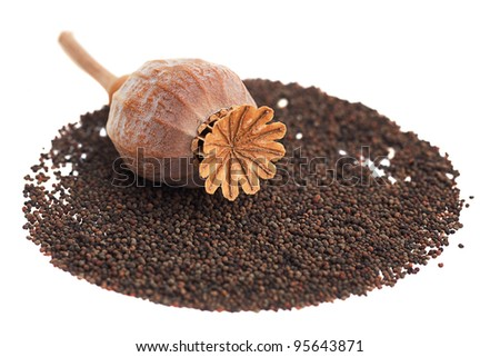 Ripe poppy seeds isolated on white background