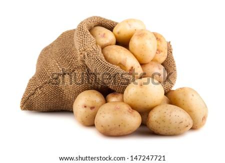 Ripe potatoes in burlap sack isolated on white background