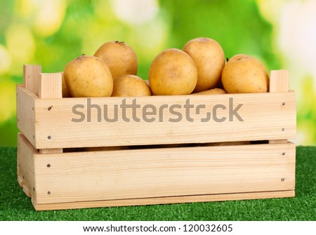 Ripe potatoes in wooden box on grass on natural background
