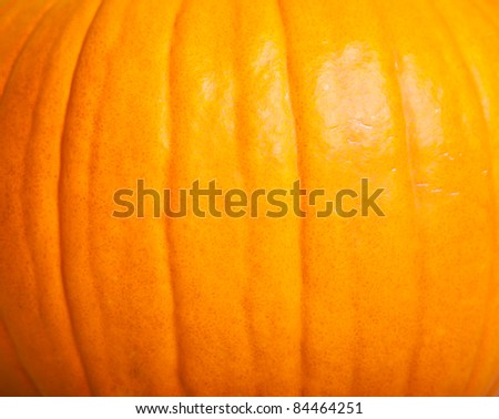 Ripe pumpkin fruits isolated on white