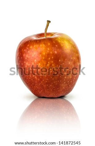 Ripe red apple with reflection. Isolated on a white background.
